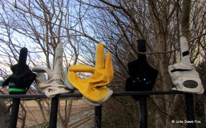 Odd gloves on a fence